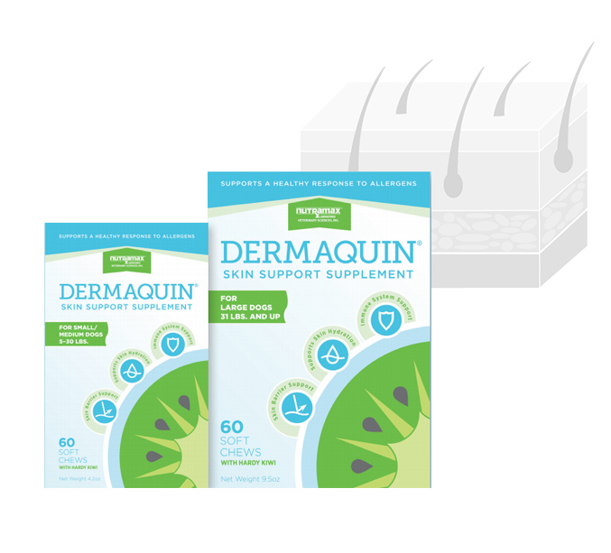 Dermaquin Product
